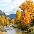 Autumn River In Montana by Athena Mckinzie