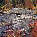 Autumn River by Joann Vitali
