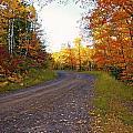 Autumn Road by Bryan Benson