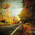 Autumn Road Connecticut Usa by Sabine Jacobs