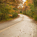 Autumn Road II by Ray Sheley