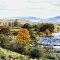 Autumn Rural Scene by Deborah Benoit