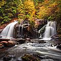 Autumn Rush by Debra and Dave Vanderlaan