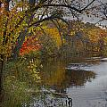 Autumn Scene Of The Flat River by Randall Nyhof