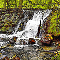 Autumn Scene With Waterfall In Forest by Odon Czintos