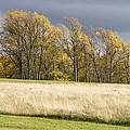 Autumn Skies Canaan Valley Of West Virginia by Bill Swindaman