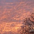 Autumn Sky by Declan Leddy
