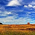 Autumn Sky Impasto by Steve Harrington