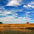 Autumn Sky by Steve Harrington