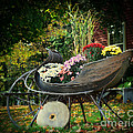 Autumn Sleigh by Lila Fisher-Wenzel