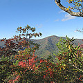 Autumn Smoky Mountains by Melinda Fawver