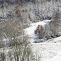 Autumn Snow West Virginia by Thomas R Fletcher