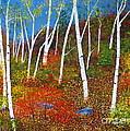 Autumn Splendour by Alicia Fowler