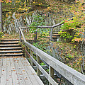Autumn Steps Near Smalls Falls In Maine by Keith Webber Jr