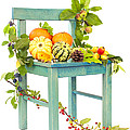 Autumn Still Life Chair by Amanda Elwell