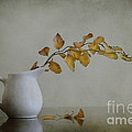 Autumn Still Life by Diana Kraleva