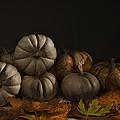 Autumn Still Life by Nebojsa Novakovic