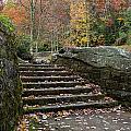 Autumn Stone Staircase by Lori Coleman