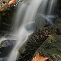 Autumn Stream by Doug Dailey