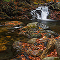 Autumn Streams In Tamworth by Chris Whiton