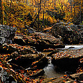 Autumn Strean by Larry Ricker