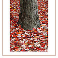 Autumn Tree Poster by Mike Nellums