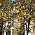 Autumn Trees In A Park Riga Latvia by Jason O Watson