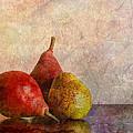 Autumn Trio  by Heidi Smith