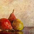 Autumn Trio  II by Heidi Smith