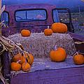 Autumn Truck by Garry Gay