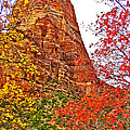 Autumn View Along Zion Canyon Scenic Drive In Zion National Park-utah by Ruth Hager