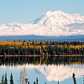 Autumn View Of Mt. Drum - Alaska by Juergen Weiss