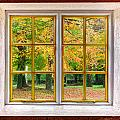 Autumn View by Semmick Photo