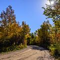Autumn by Viktor Birkus