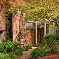 Autumn Walk In Pinehurst by Paulette B Wright