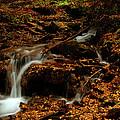 Autumn Washed Away by Jeremy Rhoades
