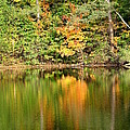 Autumn Watercolor Reflections by Rose Santuci-Sofranko