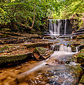 Autumn Waterfall by Adrian Evans
