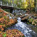 Autumn Waterfall by Debra and Dave Vanderlaan