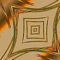 Autumn Web by Judi Suni Hall