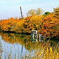 Autumn Weekend On The Delta by Joseph Coulombe