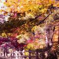 Autumn Xxxxii by Tina Baxter