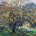 Autumn by Ylli Haruni