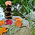 Autumn Zen by Frozen in Time Fine Art Photography