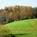 Autumnal Beauty by Paulette B Wright