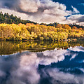 Autumnal Reflections by Greg Nyquist