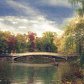 Autumn's Afternoon In Central Park by John Rivera
