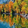 Autumn's Beauty Reflected by Lynn Bauer