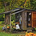 Autumn's Bounty by Priscilla Burgers