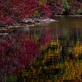 Autumns Color Pallette by Susan Candelario